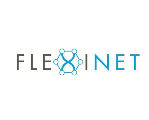 flexinet project