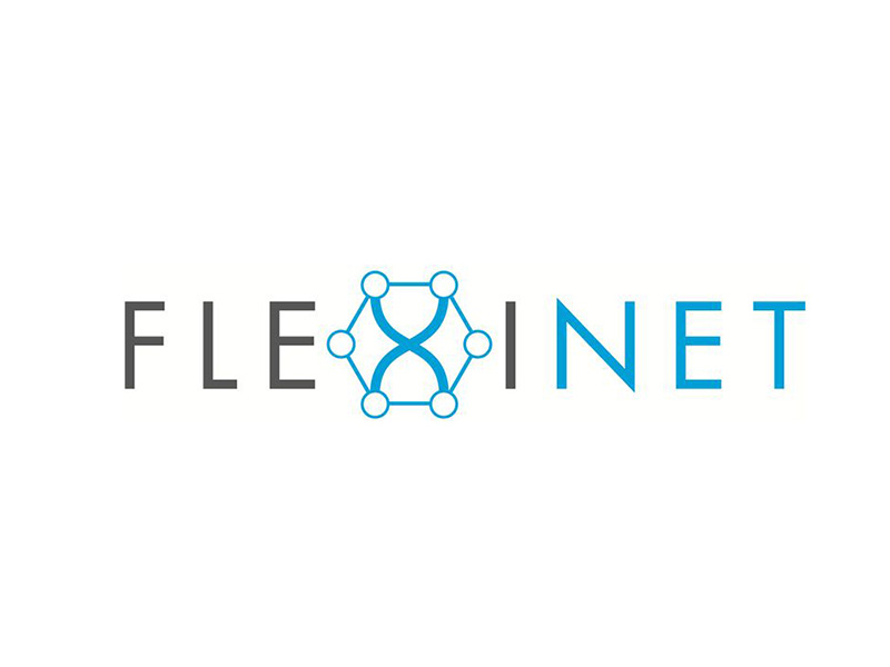 flexinet project