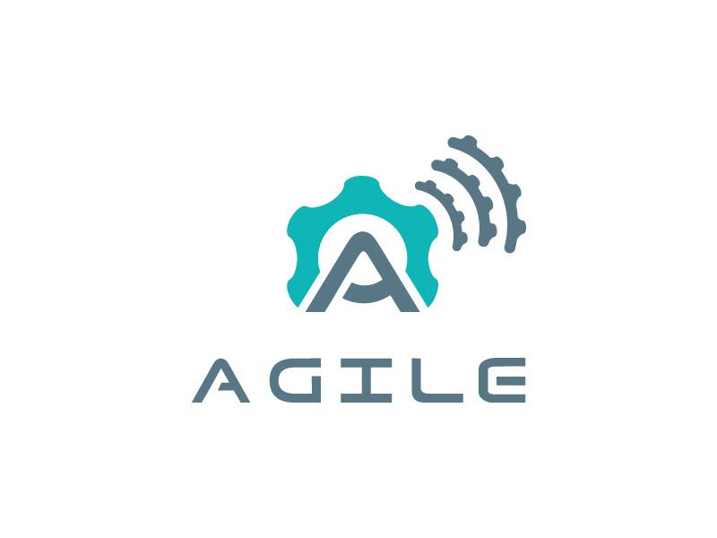 agile project